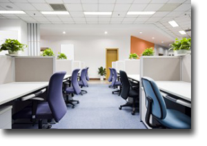 Commercial cleaning Auckland